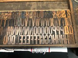 Wood Type 134 Pcs of 2 1/2 Inch