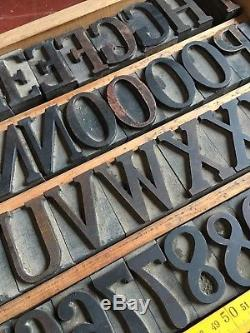 203 Pcs 50 MM Hamilton Serif Wood Type Typographie Western Print Block 4